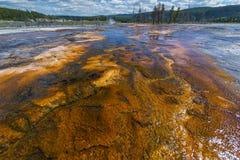 Córrego abaixo de Sapphire Pool Foto de Stock Royalty Free