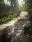 Córrego após dias chuvosos, verão da montanha da floresta em Noruega fotos de stock