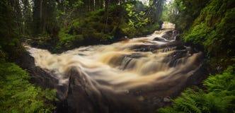 Córrego após dias chuvosos, verão da montanha da floresta em Noruega foto de stock