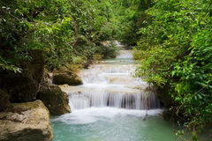 Córrego através da floresta Foto de Stock Royalty Free