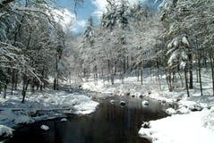 Córrego através das madeiras nevado de Nova Inglaterra Imagem de Stock