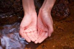 Córrego bebendo 2 Imagens de Stock