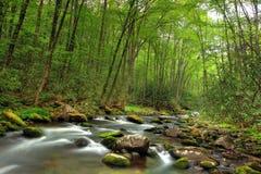 Córrego bonito Foto de Stock Royalty Free