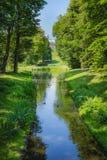 Córrego bonito com grama verde e árvores e o amigo de Belweder foto de stock royalty free