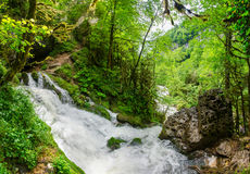 Córrego bonito do rapid do fluxo da cachoeira do leite do papel de parede Rio da montanha rochosa de Cáucaso na cachoeira de Isic Fotografia de Stock Royalty Free