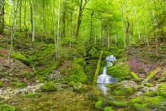 Córrego bonito do rio da montanha Fundo ensolarado da natureza do rio e das rochas Imagens de Stock