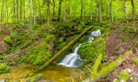 Córrego bonito do rio da montanha Fundo ensolarado da natureza do rio e das rochas Fotografia de Stock Royalty Free