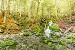 Córrego bonito do rio da montanha Fundo ensolarado da natureza do rio e das rochas Fotos de Stock Royalty Free