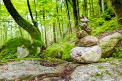 Córrego bonito do rio da montanha Fundo ensolarado da natureza do rio e das rochas Imagens de Stock Royalty Free