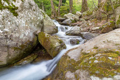 Córrego bonito na montagem de Pelion, Grécia Imagem de Stock
