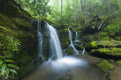 Córrego & cachoeiras, Greenbrier, Great Smoky Mountains NP Foto de Stock