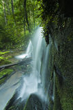 Córrego & cachoeiras, Greenbrier, Great Smoky Mountains NP Fotografia de Stock