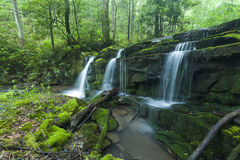 Córrego & cachoeiras, Greenbrier, Great Smoky Mountains NP Imagem de Stock