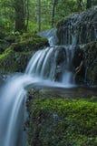 Córrego & cachoeiras, Greenbrier, Great Smoky Mountains NP Imagens de Stock