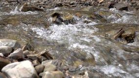 Córrego calmo da montanha entre os bancos de pedra com água de mola clara video estoque