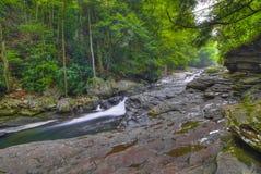 Córrego calmo em Pensilvânia Fotografia de Stock