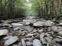 Córrego calmo que corre sobre rochas lisas fotografia de stock