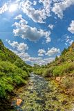 Córrego claro na primavera Imagens de Stock Royalty Free