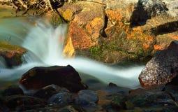 Córrego colorido Imagens de Stock