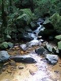 Córrego com água nas rochas Fotografia de Stock Royalty Free