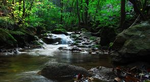 Córrego com cachoeiras pequenas Foto de Stock Royalty Free