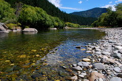 Córrego como novo Fotos de Stock Royalty Free
