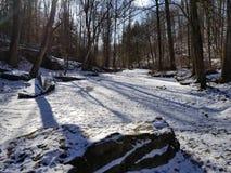 Córrego congelado Imagem de Stock