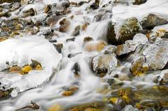 Córrego congelado Foto de Stock Royalty Free