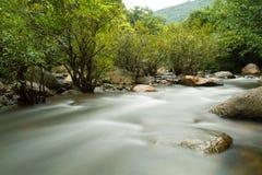 Córrego da água. Fotografia de Stock