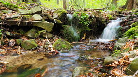 Córrego da água Fotos de Stock Royalty Free