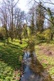 Córrego da água imagem de stock royalty free
