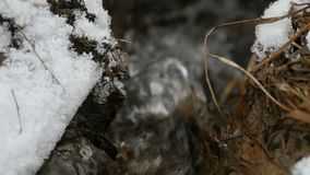 Córrego da água do derretimento filme