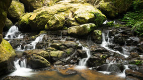 Córrego da água do parque nacional de Springbrook Imagem de Stock