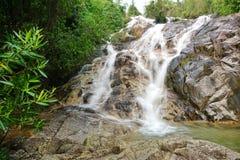 Córrego da água na floresta úmida de Malásia Fotografia de Stock Royalty Free