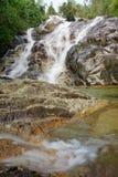 Córrego da água na floresta úmida de Malásia Imagem de Stock