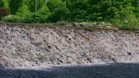 Córrego da água que cai para baixo sobre a cascata de pedra Cachoeira no movimento lento vídeos de arquivo