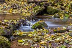 Córrego da água que flui no outono fotos de stock royalty free