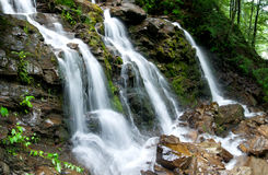 Córrego da floresta. Tamanho de XXL. Imagens de Stock Royalty Free