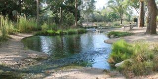 Córrego da manhã Foto de Stock Royalty Free