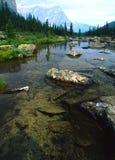 Córrego da montanha Fotografia de Stock