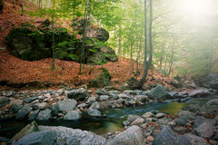 Córrego da montanha Fotografia de Stock Royalty Free