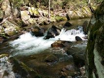 Córrego da montanha Fotos de Stock