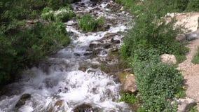Córrego da montanha filme