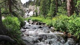 Córrego da montanha abaixo de uma cachoeira filme
