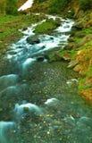 Córrego da montanha alta Imagens de Stock Royalty Free