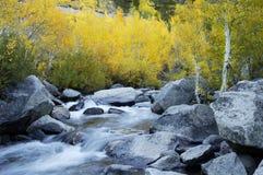 Córrego da montanha, cores da queda Fotografia de Stock