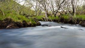 Córrego da montanha em Noruega Fotos de Stock