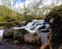 Córrego da montanha em Noruega Imagens de Stock