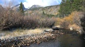 Córrego da montanha na queda vídeos de arquivo