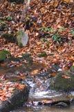 Córrego da montanha na queda Imagem de Stock